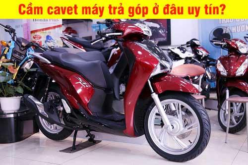 cam-giay-to-xe-khong-giu-xe